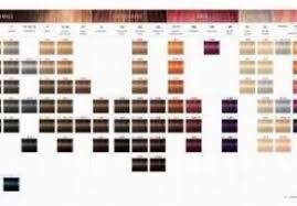 Wella Color Touch Chart Wella Color Touch Color Chart Awesome Wella Color Chart Fresh