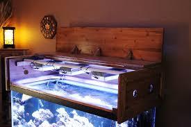 image of aquarium canopy design