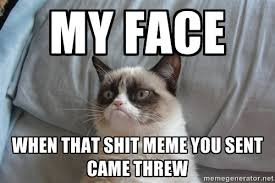 My face When that shit meme you sent came threw - moody cat | Meme ... via Relatably.com