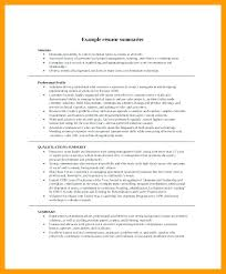 Professional Qualifications Resume New Summary Examples Resume Fathunter