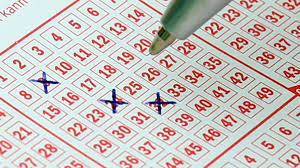 Kerala Lottery Results Announced First Prize Is Of Rs 80