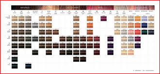 Schwarzkopf Demi Permanent Hair Color Chart 11 Symbolic Igora Personality Color Chart