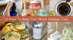 3-Odor-Eliminators-To-Keep-Your-House-Smelling-