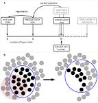 neoplasm regression, spontaneous