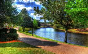 Beautiful park by the river wallpaper ...