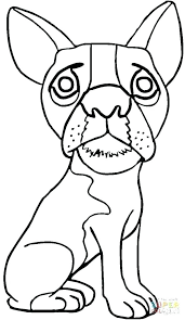 Pug Coloring Sheets Pug Coloring Page Inspirational Pug Coloring