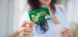 visa account updater