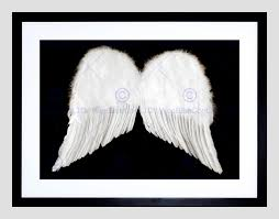 white angel wings cherub black black frame framed