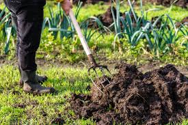 How To Repair A Lawn From Too Much Fertilizer Home Guides
