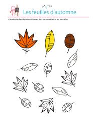 Colorier Les Feuilles Selon Le Mod Le Colorier Jouer Et Exercices