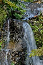 file grand cascade sheffield park garden 5120356517 jpg