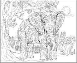 pjc smart color me my way pjc smart elephant coloring book