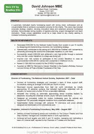 8 Examples Professional Resume Template Uk Format Best Resume Template