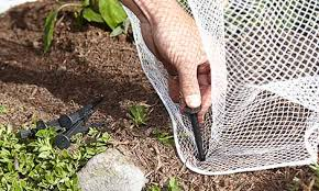 bird netting for gardens. anchor your net with pegs bird netting for gardens