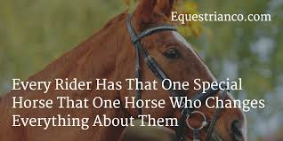 Horse Riding Quotes