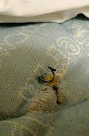 old mattress. super 8 arlington east: very old mattress