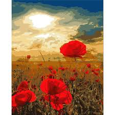 beautiful red poppy flower picture painting by numbers diy digital canvas oil painting home decor for on red poppy flower wall art with beautiful red poppy flower picture painting by numbers diy digital
