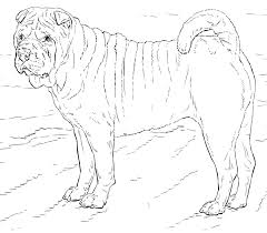 Small Picture Dogs coloring pages Free Coloring Pages