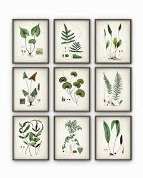 plant wall decor
