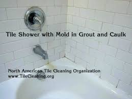 best to clean grout in shower luxury best thing to clean shower tile way remove