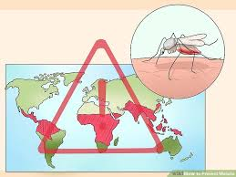 ways to prevent malaria wikihow image titled prevent malaria step 1