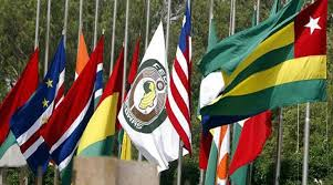 Image result for picture of ecowas flag