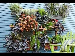 how to build a vertical garden. how to build a living wall vertical garden - this old house