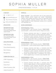 Resume Template Word Professional Cv Free Templates Download