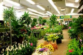 nj best garden center