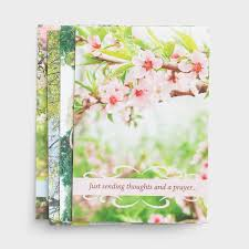 Get Well Card Get Well Spring Time 12 Boxed Cards