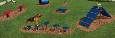 outdoor furniture surfacing comprehensive early childhood play environments shelters and pavilions dog agility course and dog park s