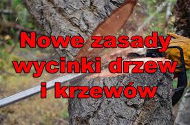 Znalezione obrazy dla zapytania wycinka drzew nowe przepisy 2017