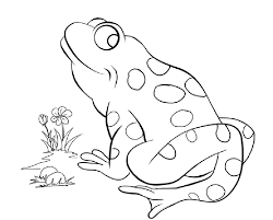 Frog Coloring Pages Free Printable L