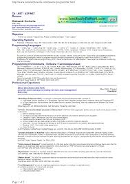 Programmer Resume Example Sample Resume For An Entrylevel Computer