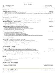 How To Spell Resume Stunning 1219 How Do You Spell Resume How Do You Spell Resume On A Cover Letter