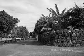 首里暮らしの首里人が綴る方言混じりの記事と写真の沖縄情報ブログ 首