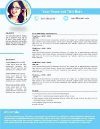 Best Resume Format 2017 Extraordinary Professional Resume Format Which Is Best 60 Examples Mmventuresco