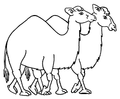 Small Picture Free Printable Camel Coloring Pages For Kids