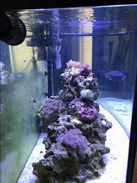 Fluval Sea Marine Reef 3 0 Spectrum Led Light Fixture Fluval Sea Marine And Reef 3 0 Review Reef2reef Saltwater