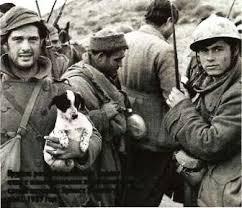 Гражданская война в Испании История России  Группа республиканских солдат общается с иностранными журналистами среди которых Эрнест Хемингуэй спиной