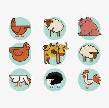 Animal Icon Poultry Icon Png Clipart Animal Icon Icon Clipart Icons