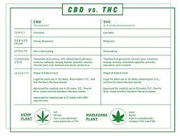 The Cannabis Conundrum Richmondmagazine Com