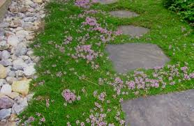flagstone sidewalk ideas. there are not many things more pleasing and inviting to the landscaping eye than stepping stone flagstone sidewalk ideas r