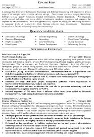 It Manager Resume Template Director Of It Resume Example Templates
