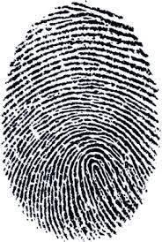 Image result for finger print