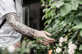 картинки человек растение ретро цветок роза молодой палец