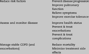 Copd Management Plan Components And Treatment Goals For