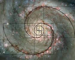 Image result for fibonacci sequence milky way