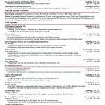 Financial Advisor Resume Inspirational It Professional Resume ...