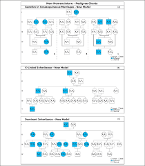 X Chromosome Inheritance Chart New Nomenclature Pedigree Charts All Individuals Are